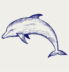 Beautiful dolphin jumping in the water vector