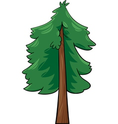 Cartoon of conifer tree vector