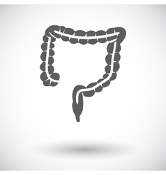 Intestines icon vector