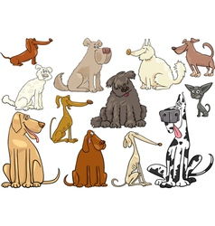 Cartoon dogs or puppies big set vector