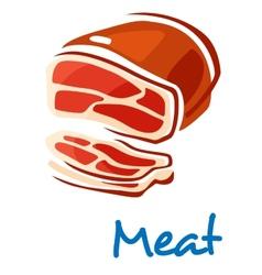 Fresh raw meat vector