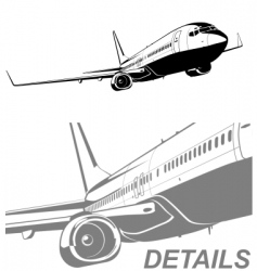 Commercial airliner vector
