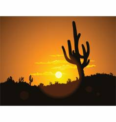 Cactus sunset vector