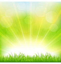 Green background with green grass and sunburst vector