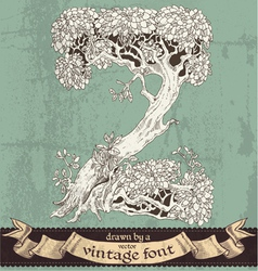 Magic grunge forest hand drawn by vintage font - z vector