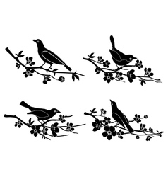 Birds on branches silhouettes vector