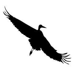 Silhouette of flying crane vector