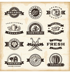 Vintage organic harvest stamps set vector