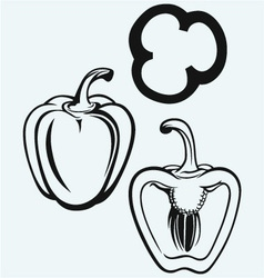 Sweet peppers sliced in pieces vector