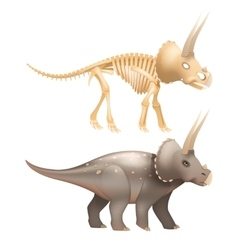Triceratops dinosaur art with skeleton vector