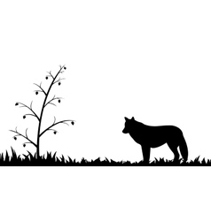 Silhouette of wolf in the grass vector