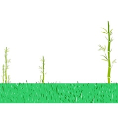 Asian bamboo garden vector