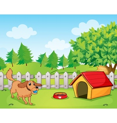 A dog playing inside the fence vector