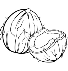 Coconut for coloring book vector
