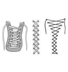 Laces vector