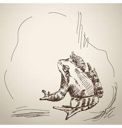 Sketch of frog vector
