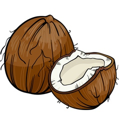 Coconut cartoon vector