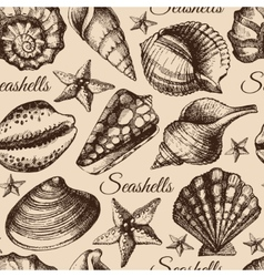 Seashell seamless pattern hand drawn sketch vector