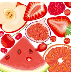 Mix red fruits and berries vector