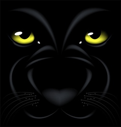 Panther eyes vector