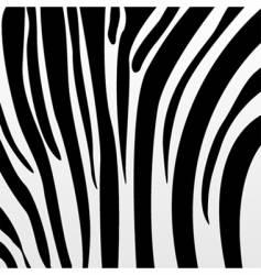 Zebra pattern vector