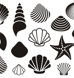 Sea shells and starfish vector