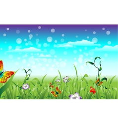 Meadow with butterfly vector