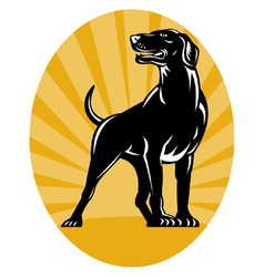 Retriever dog woodcut style vector