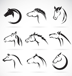 Group of horse head design vector