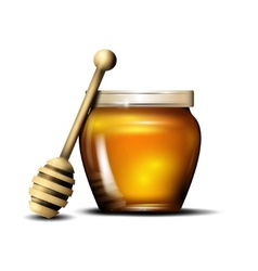 Honey isolated vector