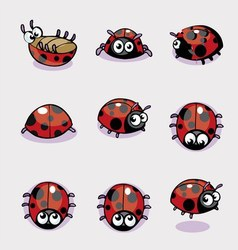 Set of lady bug vector