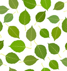 Seamless with green birch leaves vector
