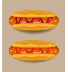 Hotdogs chili sauce and tomato sauce vector