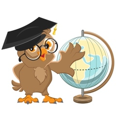Owl teacher turns globe vector