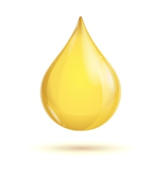 Oil transparent drop vector