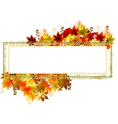 Fall leaves frame vector