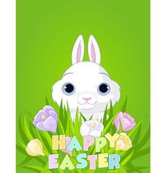 Easter bunny with crocus bouquet vector