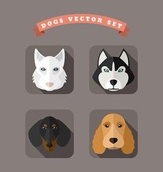 Animal portrait with flat design dogs vector