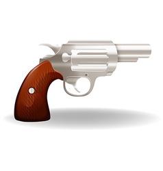Short gun vector