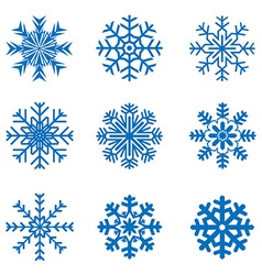 Frosty snowflakes vector