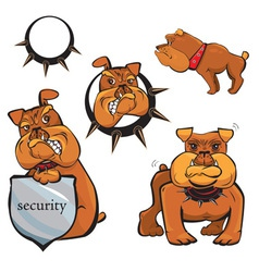 Set of bulldog cartoons vector