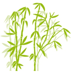 Green bamboo trees vector