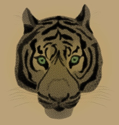 An of a tiger vector