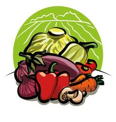 Vegetable harvest vector