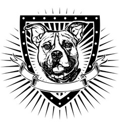 Pit bull shield vector
