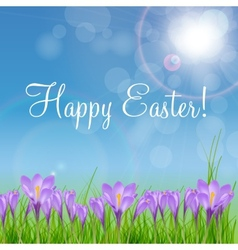 Happy easter card with crocuses vector