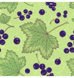 Black currants seamless pattern vector