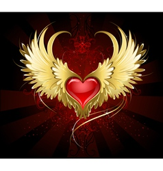Red heart with golden wings vector