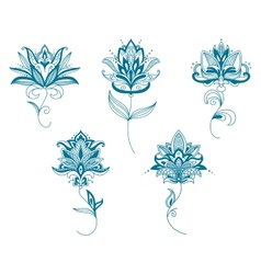 Blue persian flowers in paisley style vector