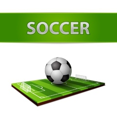 Soccer ball and grass field emblem vector